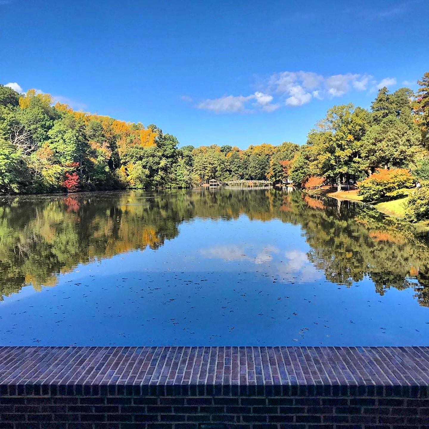 Polls close in just a few hours — so if you haven't voted, get out there and vote! And if you have, take a breath, relax, and enjoy this calming view of Westhampton Lake.  📸: @urdining